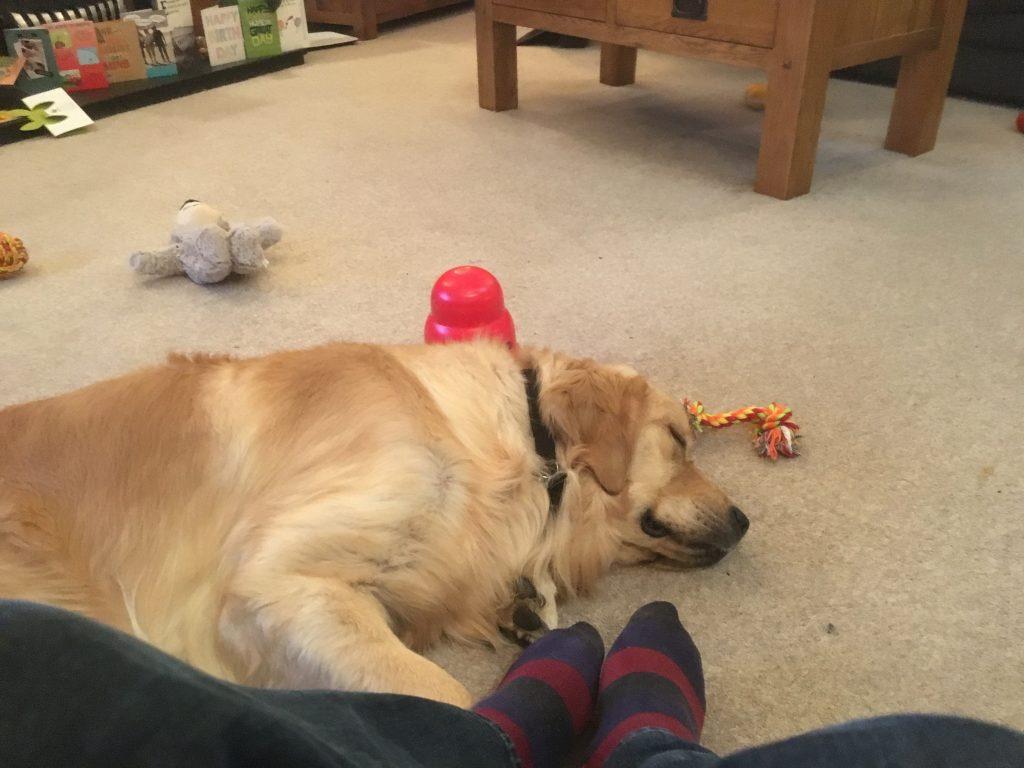 Tired Monty