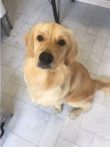 Monty looking handsome!